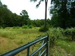 000 Cottonwood - Photo 6