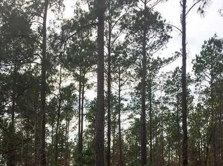 1837 Ac Wilderness - Photo 6