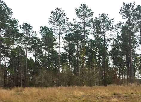 1837 Ac Wilderness - Photo 8