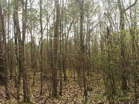 1837 Ac Wilderness Road - Photo 1
