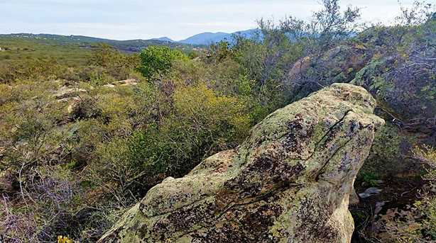 50950 SE Tule Peak - Photo 30
