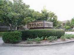 10555 Turtlewood #2310 - Photo 24