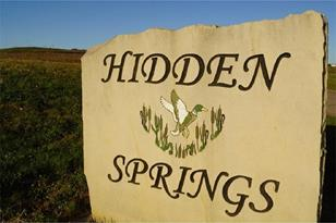 106 Hidden Springs Dr - Photo 1