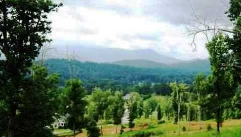 0 Standing Meadows Dr #LOT 24 - Photo 4
