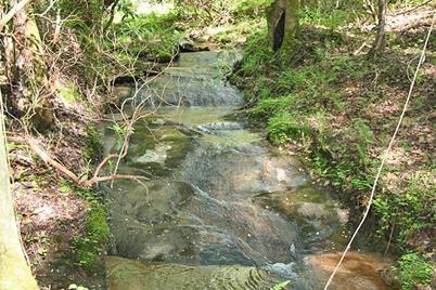 Castleberry Bridge Rd - Photo 1