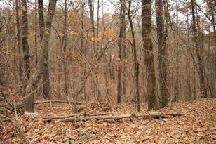 0 Pecks Mill Creek Rd - Photo 1
