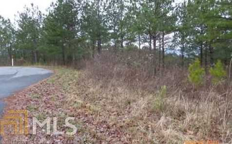 0 Hills At Queens Gap #125 - Photo 2