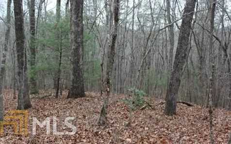 Indian Trail #4 - Photo 6