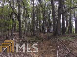 0 Old Lake Russell Rd #Lot 14 - Photo 6
