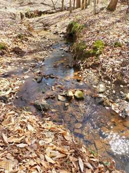 205 River Oaks Dr - Photo 32