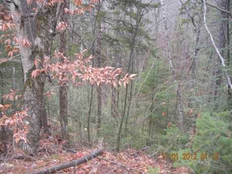 3 White Fawn Trail - Photo 14