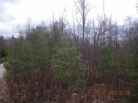 3 White Fawn Trail - Photo 6
