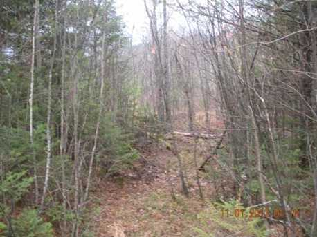 3 White Fawn Trail - Photo 10