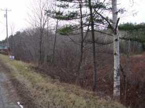 9005 Vt Route 30 - Photo 4