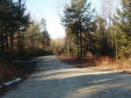 Cole Pond Road #Lot A - Photo 1