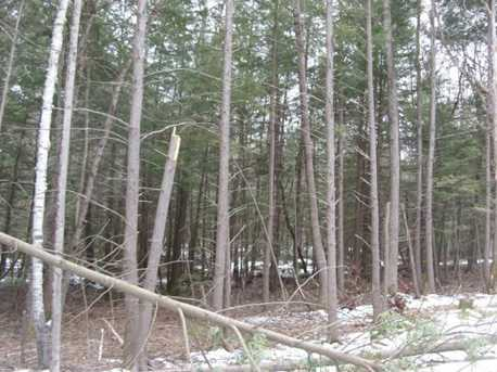 2 Beech Tree Way - Photo 8