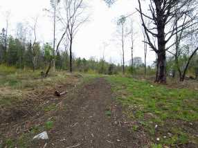 209 Coits Pond Road #Lot 3B - Photo 14