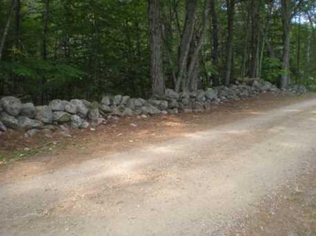 43 Tuftonboro Neck Road - Photo 14