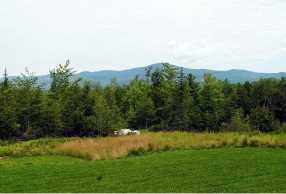 Lot 7 Farm Pond Lane - Photo 10