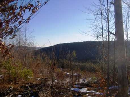Lot 124 Freeman Colby Road - Photo 4