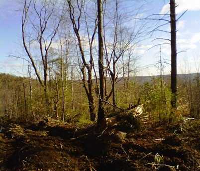 Lot 124 Freeman Colby Road - Photo 2
