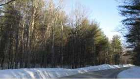 Lot #9 &amp 9-1 Old Wolfeboro Rd - Photo 12