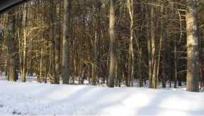 Lot #9 &amp 9-1 Old Wolfeboro Rd - Photo 16