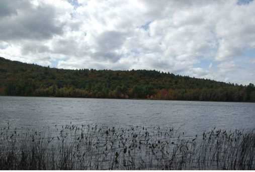 Tbd Stocker Pond - Photo 6