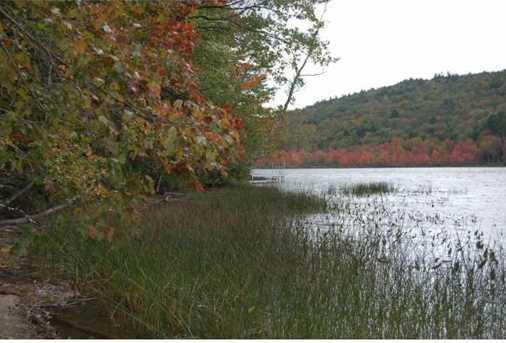 Tbd Stocker Pond - Photo 4