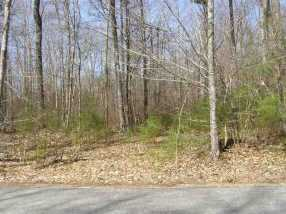 00 Birch Hill Road - Photo 1