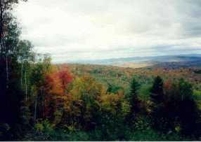 Lot 9C Mountain View - Photo 1