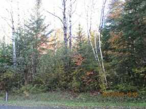 10673 Dubeau Road - Photo 2