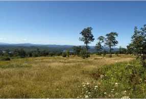 0 High Meadow Road - Photo 4