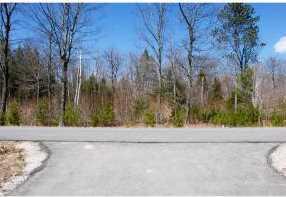103 Grandview Road - Photo 6