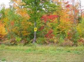 19A-5 Moose Brook Lane - Photo 1