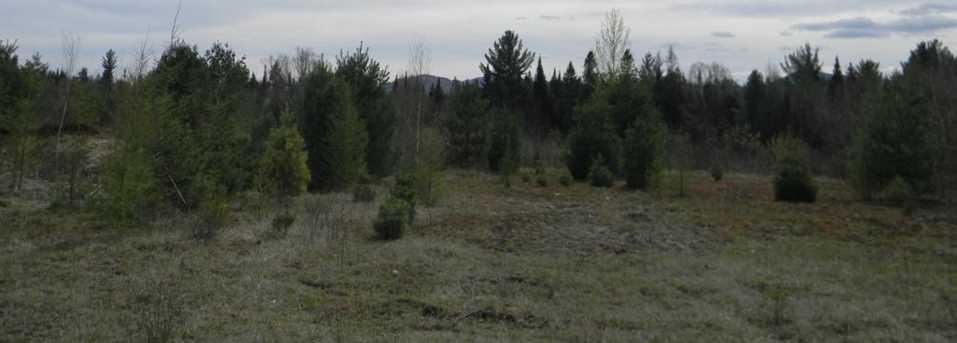 104 L27 Bog Road - Photo 6