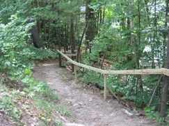 Lot 41 Wilderness Loop - Photo 6