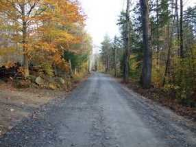 801 Old County Rd - Photo 2