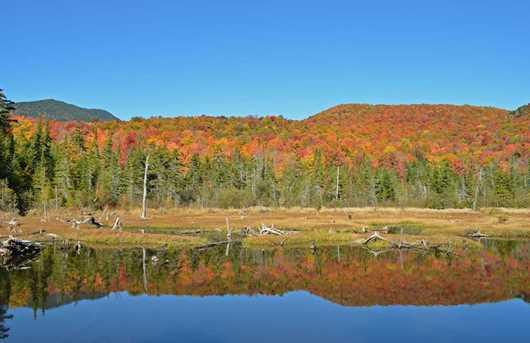 Beaver Meadow Rd - Photo 2
