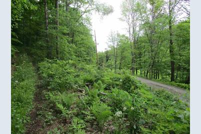 0 Bear Hill/Upper & Lower Maloney Road - Photo 1