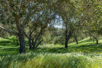 0 E Oak Trail Ranch Road - Photo 1