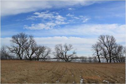 Lot 1 257th Ave. - Photo 1
