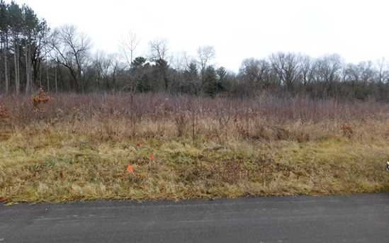 Lot 1 290th Ave - Photo 1
