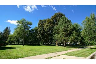 1161 Oak Street - Photo 1