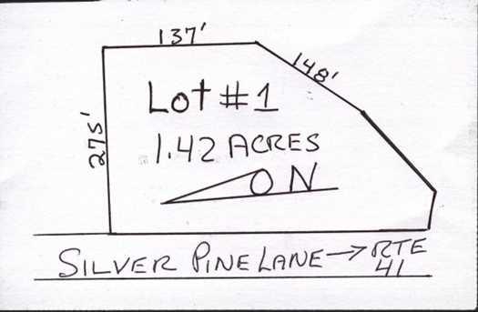 R1 Silver Pines Lane - Photo 1