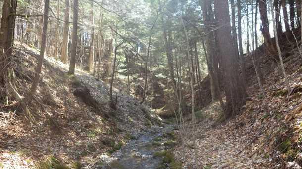 0 Shepard Hill Road - Photo 1