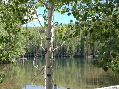 1 N Puffer Lake Property - Photo 12