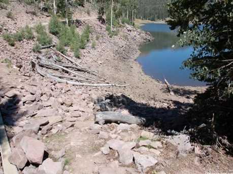 1 N Puffer Lake Property - Photo 4