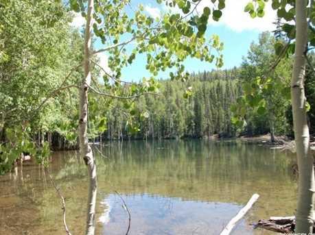 1 N Puffer Lake Property - Photo 14