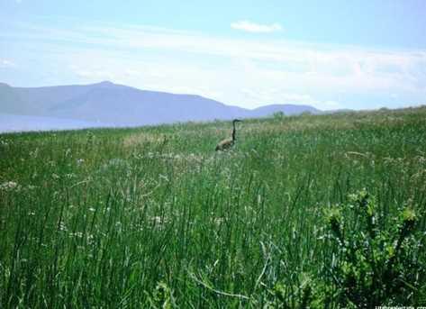 26 Bear Lake Ranches - Photo 20
